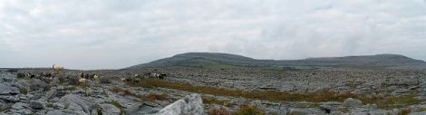 A The Burren (2)