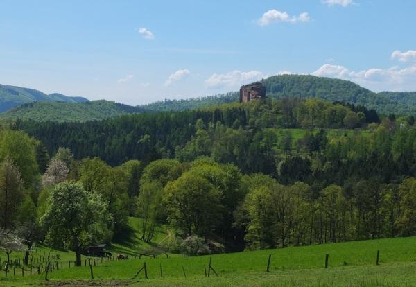 Vosges 202