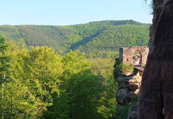 Vosges 206